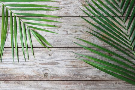 Tropical leaves on old wood floor for text. Summer background concept.