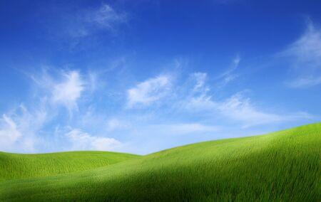 Green land with blue sky landscape background