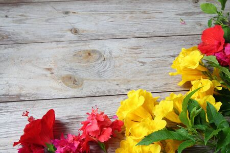 Colorful florals placed on the table old wooden background
