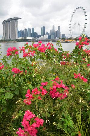 singapore city: Singapore city Editorial