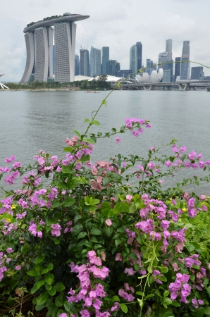 garden city: La ciudad jard�n, Singapur