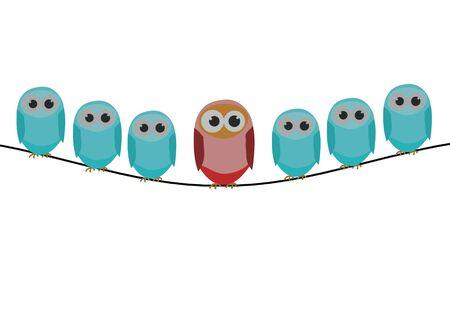 Blue bird series, a row of bird with red bird photo