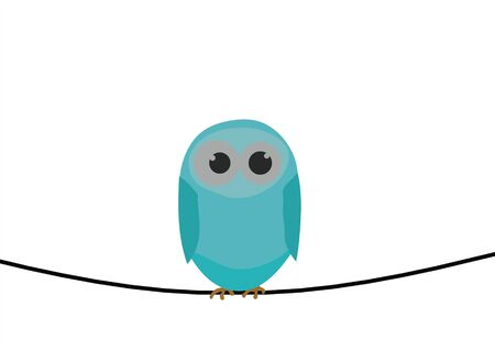 telephone poles: Blue bird on wire Stock Photo