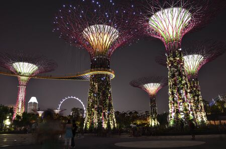 scenary: Garden by the bay, Singapore Editorial