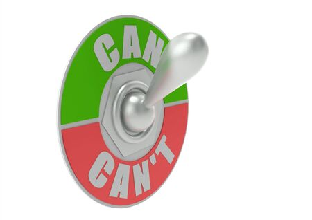 cant: Can or Can t Toggle Switch