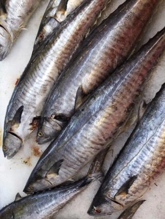 Fresh fish in the market Stock Photo - 18084211