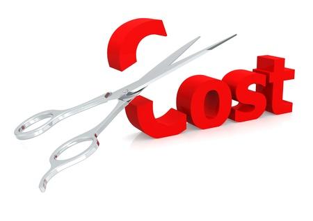 knippen: Schaar en kosten