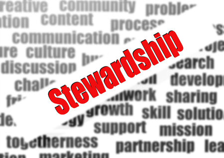 sales executive: Stewardship word cloud