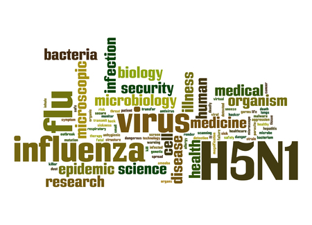 h5n1: H5N1 word cloud Stock Photo