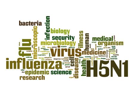 h5n1: H5N1 word cloud Stock Photo