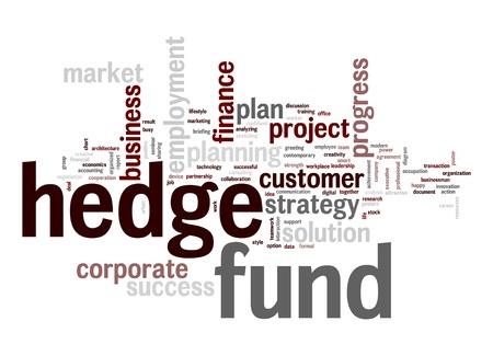 Hedge fund woordwolk Stockfoto - 29676126