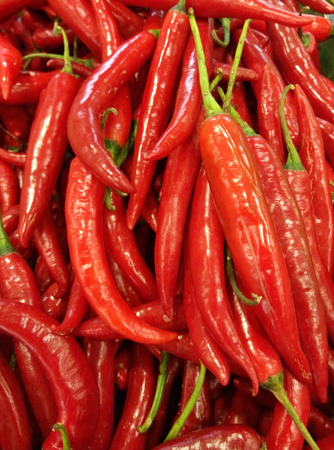 extensively: Green and Red Chillies are used extensively in many parts of Indian cuisine.