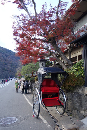 KYOTO, JAPAN-DEC 14: A Jinrikisha parks under the red maple tree in Arashiyama, Kyoto on December 14, 2014, ,Japan.The word jinrikisha is of Japanese origin and means human-powered vehicle.