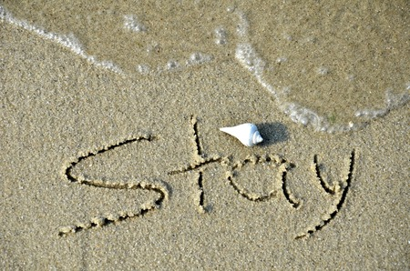 Written stay word on the beach. a shell is on the top of the word Stock Photo