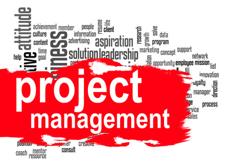 management system: Project management word cloud image with hi-res rendered artwork that could be used for any graphic design.