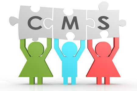 headliner: CMS - Content Management System puzzle in a line image with hi-res rendered artwork that could be used for any graphic design.