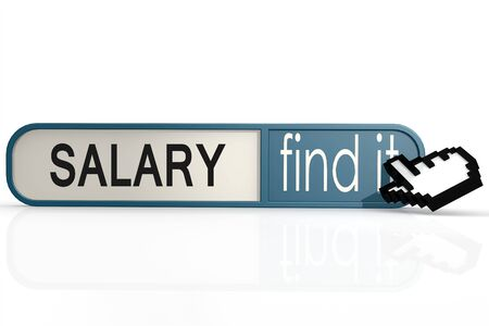 salaries: Salary word on the blue find it banner image with hi-res rendered artwork that could be used for any graphic design.