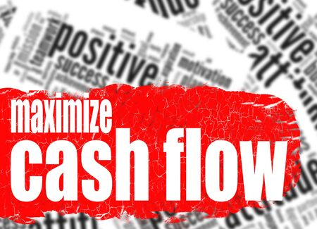 maximize: Word cloud maximize cash flow image with hi-res rendered artwork that could be used for any graphic design. Stock Photo