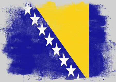 history month: Flag of Bosnia and Herzegovina painted with brush on solid background, Stock Photo