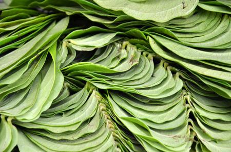 hydroxide: Betel leaf on the market, Little India, Singapore