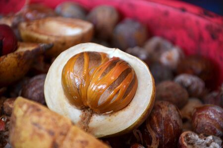 Sectional view of ripe colorful nutmeg fruit Stock Photo