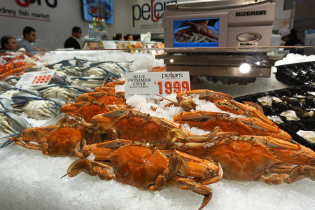 blue swimmer crab: SYDNEY - AUG 21: Price tag on blue swimmer crab at Sydney Fish Market on August 21, 2015 in Sydney. It is 3rd largest fish market in the world, established in 1945 by the government.