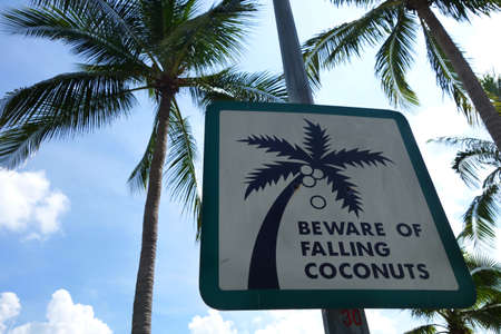 peril: Sign of coconut fall in a park. Beware of falling coconuts