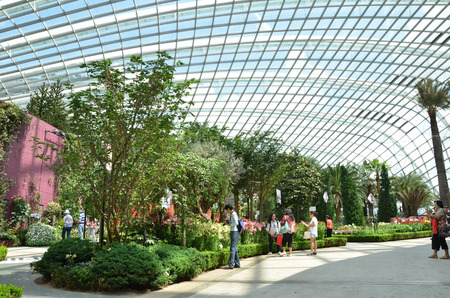 conservatories: SINGAPORE- JUNE 07 , 2016: Display in the Flower Dome, one of two conservatories within the Gardens by the Bay spanning 101 hectares of reclaimed land in central Singapore Editorial