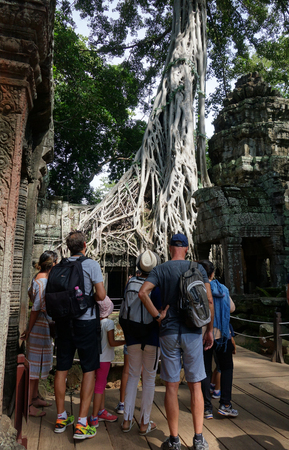 strangler: ANGKOR WAT, CAMBODIA- 21 OCT, 2016: Unidentified tourists at Ta Prohm temple in Angkor Wat. Angkor Wat is the largest Hindu temple complex and religious monument in the world