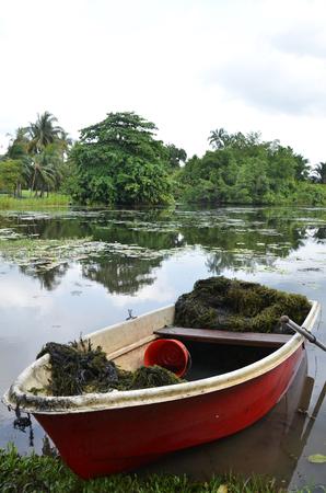 botanic: Red boat parks in the lake in Singapore Botanic Garden