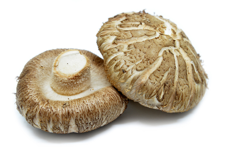 Brown Shiitake mushrooms isolated on white background