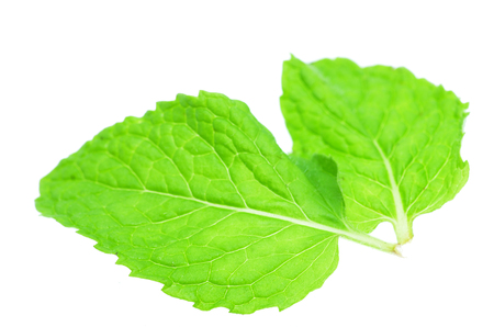 Fresh mint leaves isolated on white background Stock Photo