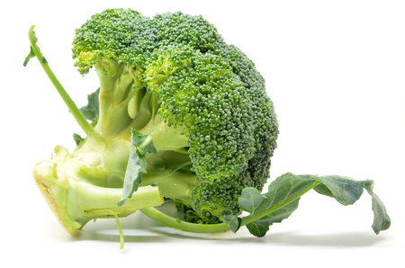 Fresh broccoli isolated on white background. Close up