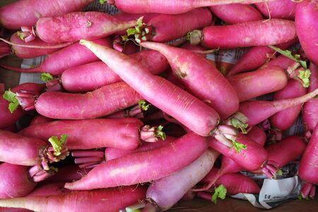 Red radish sold in vegetable stall in Little India, Singapore