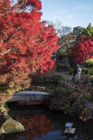 Koko-en garden with fall foliage colors near the small pond in Himeji Japan. Here is very famous to see autumn foliage colors during November