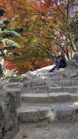 Himeji, Japan- 30 Nov, 2019: Tourists watch beautiful autumn leave around Himeji in autumn season. Himeji Castle is the largest and most visited castle in Japan 新聞圖片