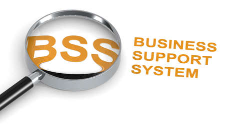 BSS, Business Support System, word under magnifying glass, 3d rendering
