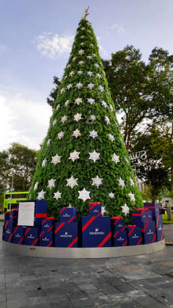 Singapore, 08 Nov, 2020: Green Christmas tree decolated with stars with blue sky