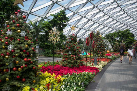 Singapore - Dec 31, 2020: Christmas decoration in Petal Garden at Jewel Changi Airport.