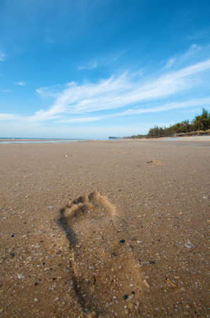 Foot prints on the beach photo