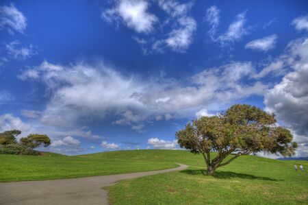 bay area: Green Grass Landscape and blue sky at Berkeley Marina in the East Bay, California