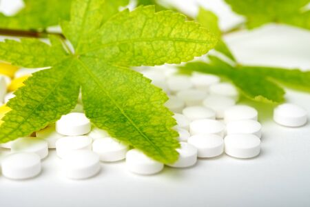 leaf on pills as alternative medicine concept Stock Photo