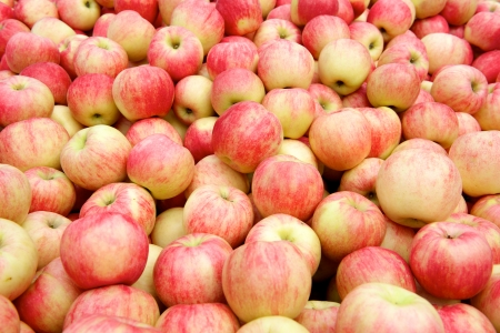 Fresh red apples in the box in China