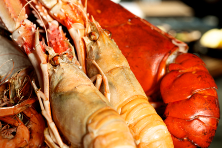 close ups: Giant red Lobsters close ups