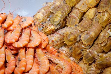 Fresh mantis shrimp and orange shrimps