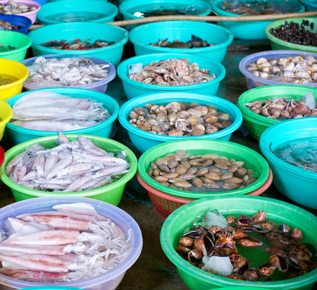 city fish market: Various fresh seafood in the fish market in Vietnam