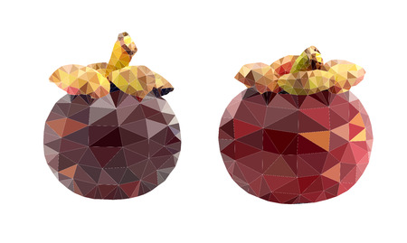 Mangosteen polygon vector illustration on white background