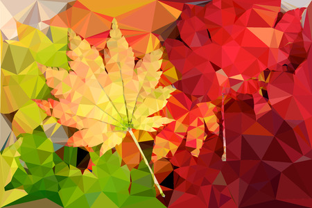 Beautiful polygon vector colored maple leaves