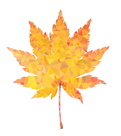 Yellow maple leaf vector polygon illustration isolated