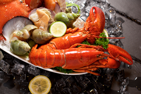 plater: Seafood lobster plater with ice on slate